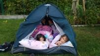 Dodo sous la tente